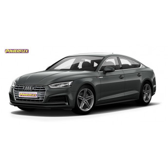 A5 / S5 / RS5 (2017 - ON)